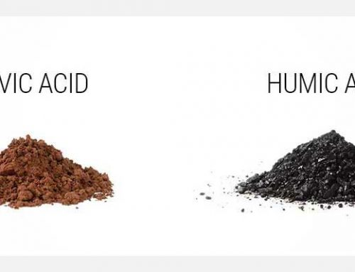 Humic Acid or Fulvic Acid?